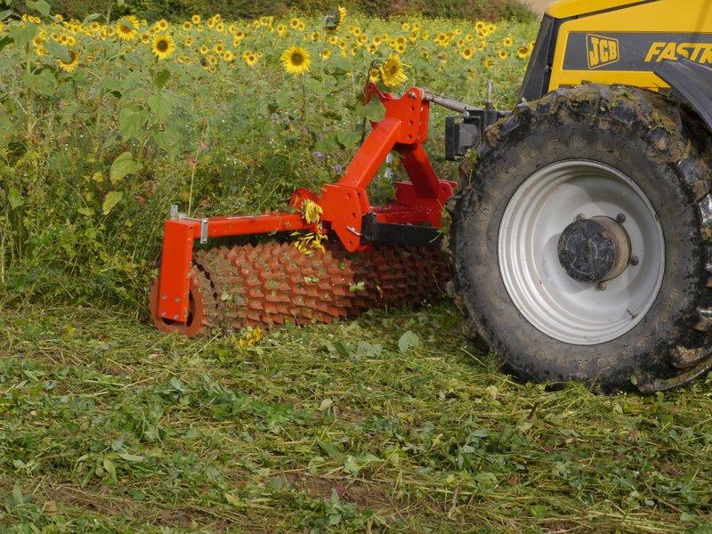 zuckerfabrik anklam biogas